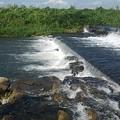 川の堰(9月4日)
