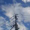 Photos: 電柱と雲のある青空(9月6日)