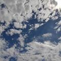 Photos: 9月8日の鱗雲もある空