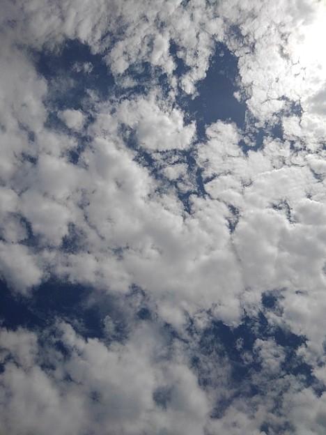 鱗雲(9月8日)