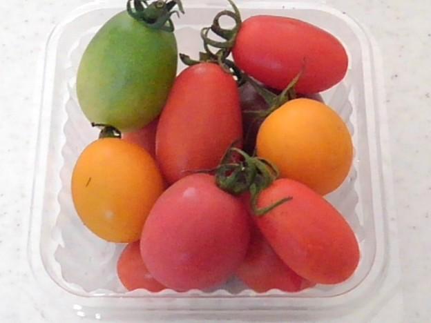 道の駅やいたのカラフルプチトマト