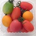 Photos: 道の駅やいたのカラフルプチトマト