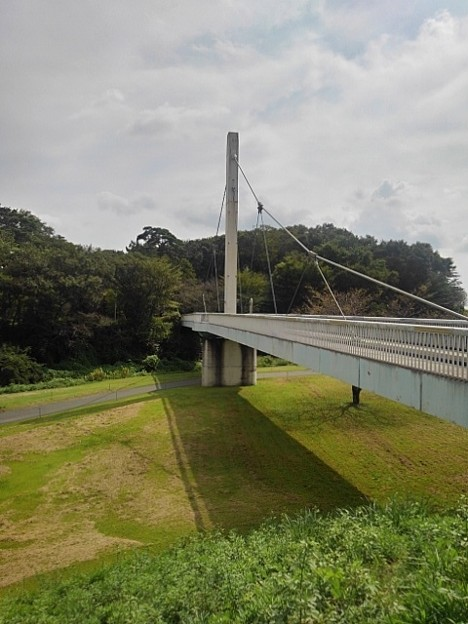 ゆうゆうパークの白い陸橋(9月21日)