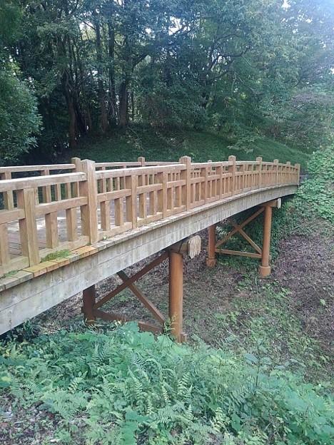 ゆうゆうパークの丘の陸橋(9月21日)