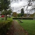 小さな公園の散歩道(9月13日)