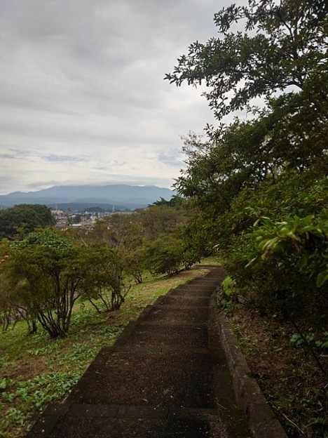 長峰公園の丘の上あたりの道(9月20日)