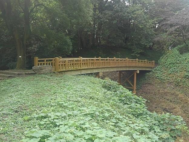 ゆうゆうパークの丘で見られた陸橋(9月21日)