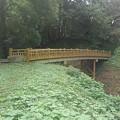 Photos: ゆうゆうパークの丘で見られた陸橋(9月21日)