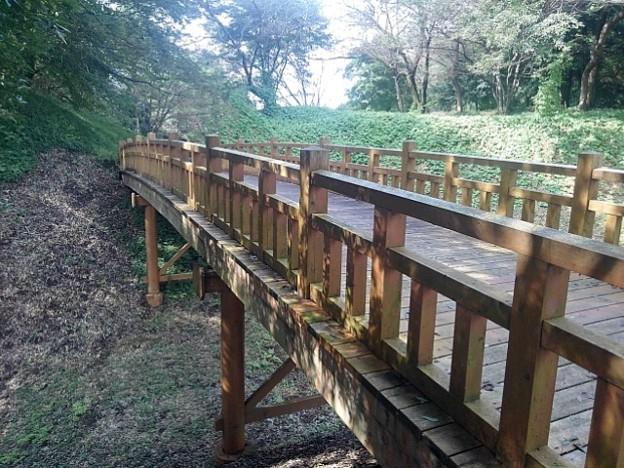緑の丘の陸橋の景色(9月21日)