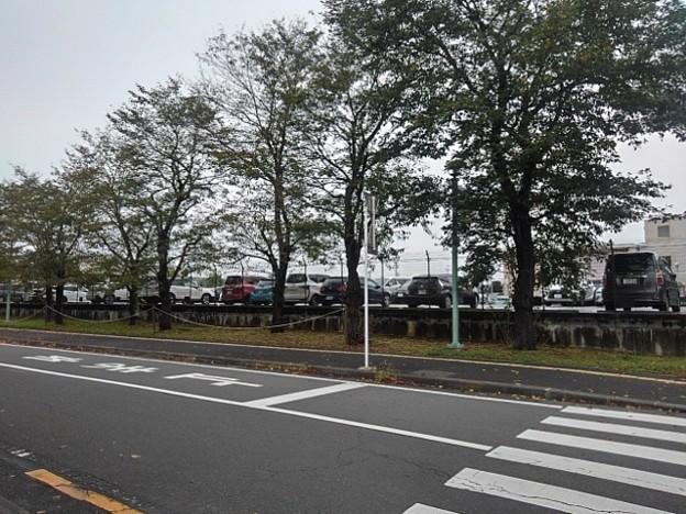 済生会病院の道(10月9日)