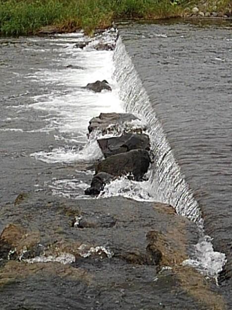川の堰(9月29日)
