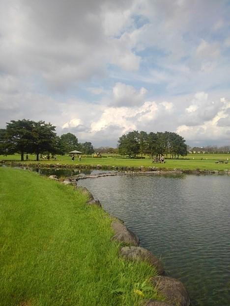 ゆうゆうパークの空がきれいな池(9月21日)