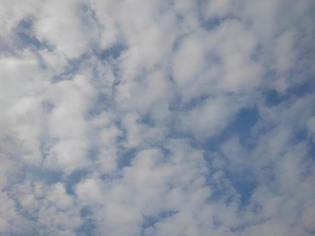 鱗雲(10月4日)