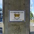 Photos: マスクブレッキー(10月24日)