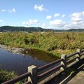 Photos: 橋の欄干と川の景色(10月21日)