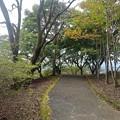 Photos: 丘の道(10月11日)