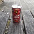 缶コーヒーとベンチ(11月1日)