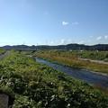 青空も綺麗な川(10月21日)