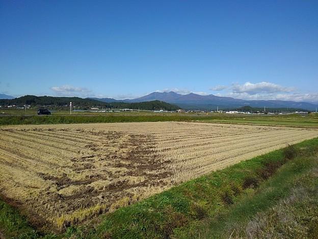 田園と山(10月29日)
