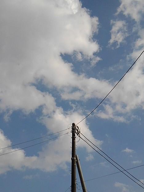 Photos: 電柱の上の空(11月8日)