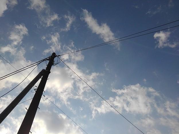 Photos: 見上げた電柱と空(11月8日)