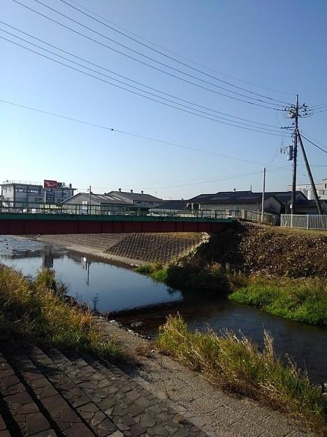 橋もある景色(11月17日)