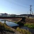 Photos: 橋もある景色(11月17日)