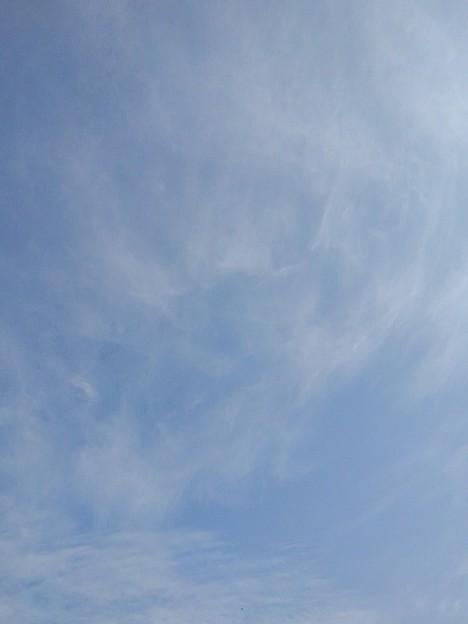 空(11月19日)