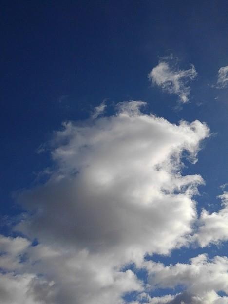 空(11月21日)