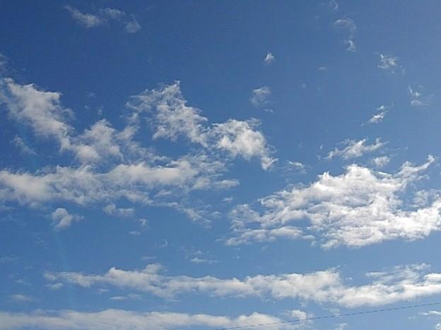 空(11月24日)