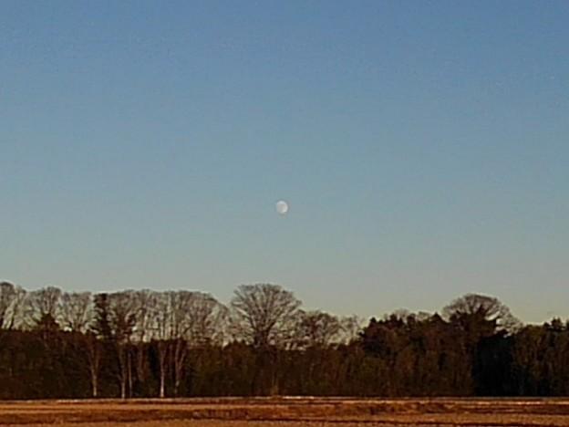 Photos: 月も見える田園地帯(11月28日)