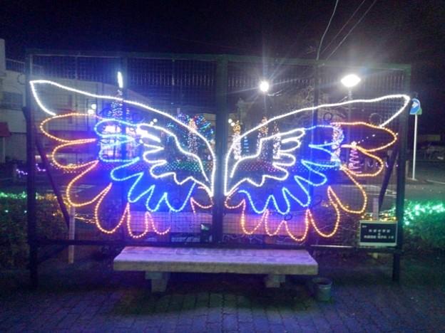 Photos: 矢板駅イルミ・羽根(12月5日)