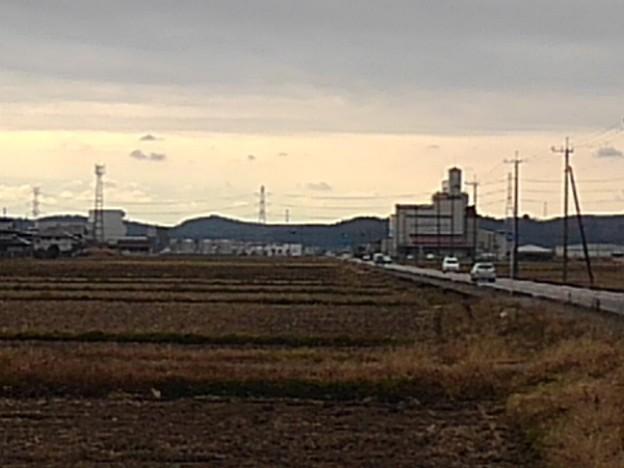 田園の道路(11月27日)