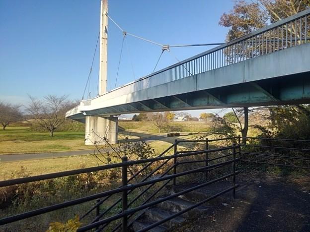 ゆうゆうパークの丘から見えた陸橋(11月22日)