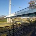 Photos: ゆうゆうパークの丘から見えた陸橋(11月22日)
