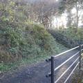 ゆうゆうパークの丘の下り階段あたりの景色(11月22日)