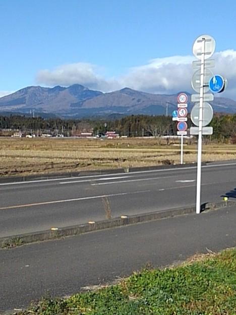 地元の道(12月8日)