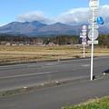 Photos: 地元の道(12月8日)