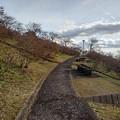 Photos: 長峰公園の丘の石のベンチもある道(12月13日)