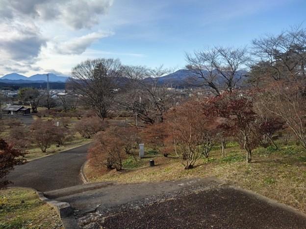 長峰公園の丘の下り階段の道(12月13日)