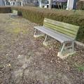 Photos: 小さな公園のベンチと赤い落ち葉(12月19日)
