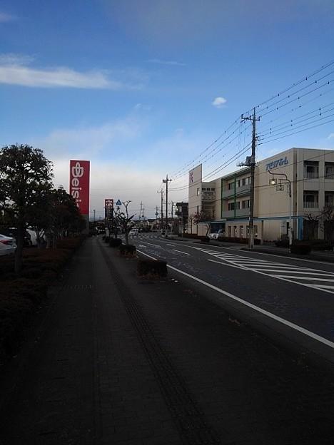 Photos: 歩道(12月19日)