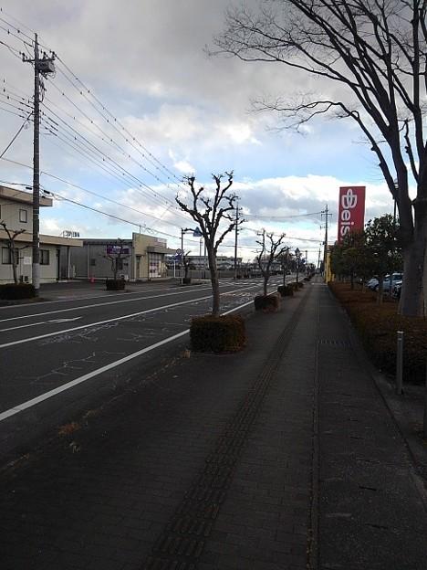 冬の道(12月19日)