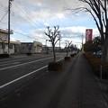 Photos: 冬の道(12月19日)