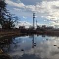 Photos: 公園の池の映り込み(1月1日)