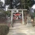 烏ケ森公園の丘の白い鳥居(1月2日)