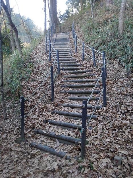 川崎城跡公園の丘の階段(12月28日)