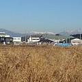 Photos: 街の奥の山(12月24日)