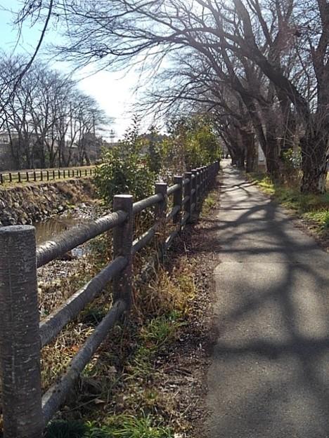 川沿いの道(12月26日)