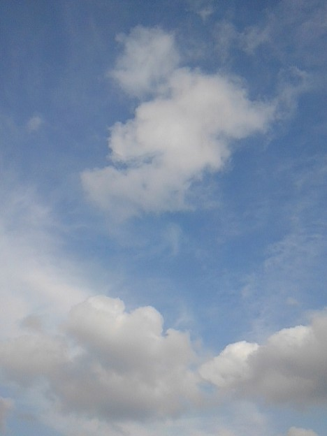 空の雲(1月5日)